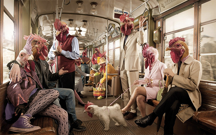 hens on train