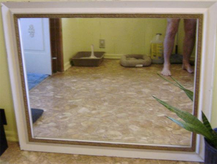 26 Hilarious Ways People Have Tried To Sell Mirrors -5402